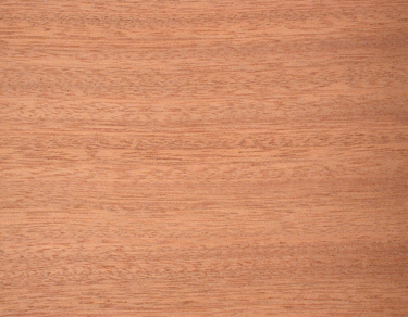 Sapele (Quartersawn)